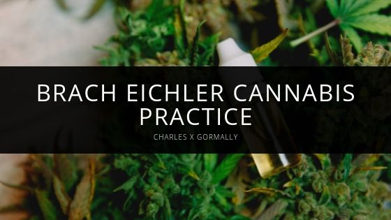 Meet the Attorneys at the Brach Eichler Cannabis Practice, Co-Chaired By Attorney Charles X Gormally